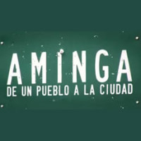 Aminga